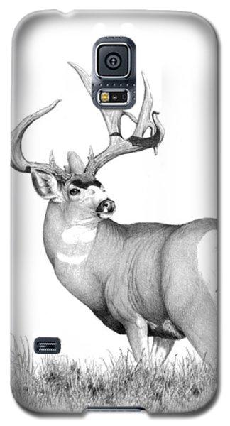 Pilot Monarch Galaxy S5 Case