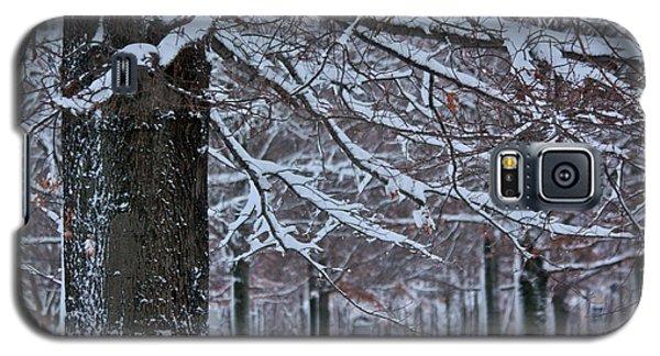 Pin Oak Snow Galaxy S5 Case