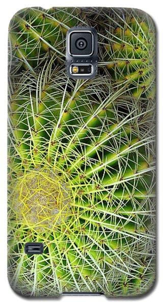 Pincushion Cactus  Galaxy S5 Case