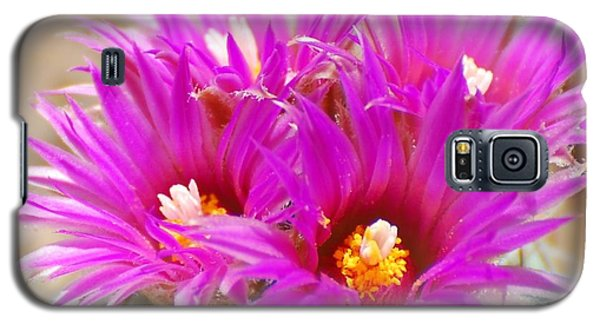 Pincushion Galaxy S5 Case