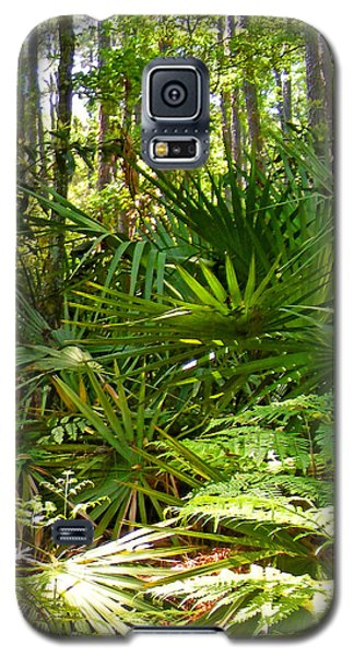 Pine And Palmetto Woods Filtered Galaxy S5 Case