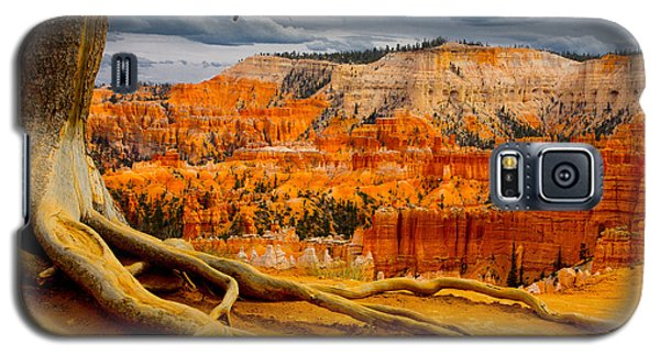 Pine At Bryce Galaxy S5 Case