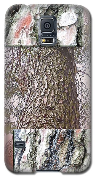 Pine Bark Study 1 - Photograph By Giada Rossi Galaxy S5 Case