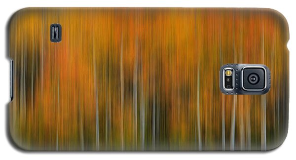 Pine Canyon Autumn Impressionistic Galaxy S5 Case
