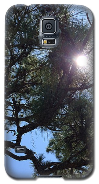 Pine Face With Sun Eye Galaxy S5 Case