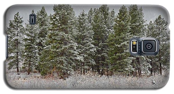 Pine Flurries Galaxy S5 Case
