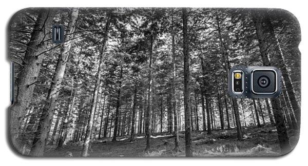 Pine Forest Galaxy S5 Case