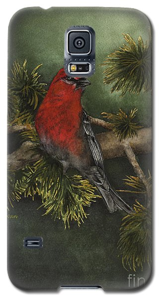 Pine Grosbeak Galaxy S5 Case