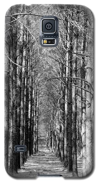 Pine Plantation Galaxy S5 Case
