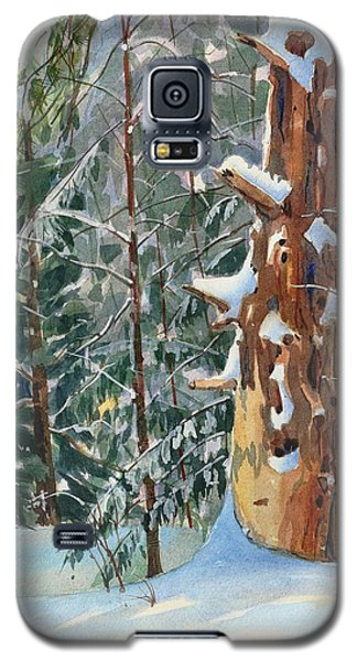 Pine Sentinel Galaxy S5 Case
