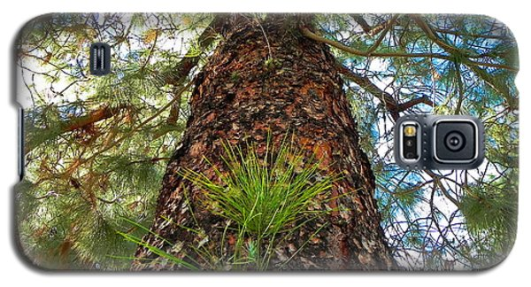 Pine Tree Tower Galaxy S5 Case