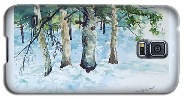 Pine Trees And Snow Galaxy S5 Case