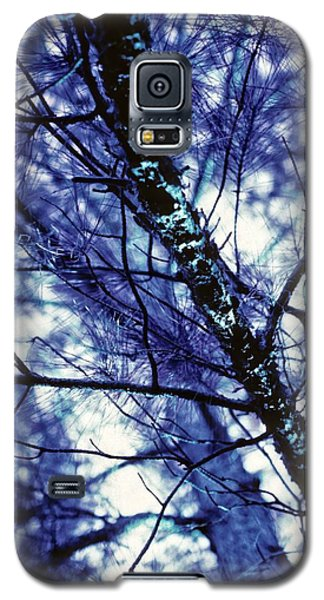 Pine Trees Redux In Blue Galaxy S5 Case