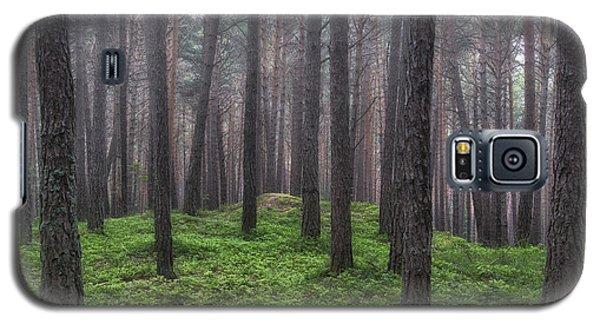 Pine Wood Galaxy S5 Case