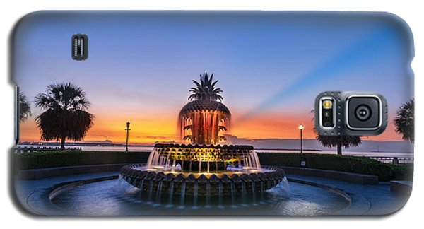 Galaxy S5 Case featuring the photograph Pineapple Dawn by RC Pics