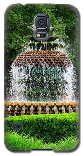 Pineapple Fountain 2 Galaxy S5 Case by Randall Weidner