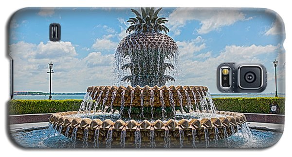 Galaxy S5 Case featuring the photograph Pineapple Fountain by Sennie Pierson