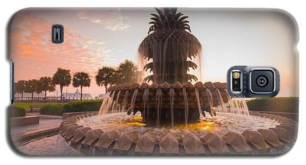 Pineapple Fountain Galaxy S5 Case by Serge Skiba
