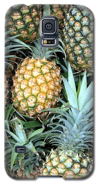 Galaxy S5 Case featuring the photograph Pineapple Paradise by Karen Nicholson