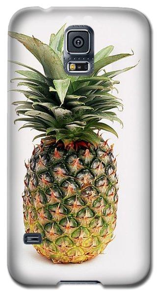 Pineapple Galaxy S5 Case
