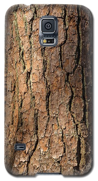 Pinebark Galaxy S5 Case