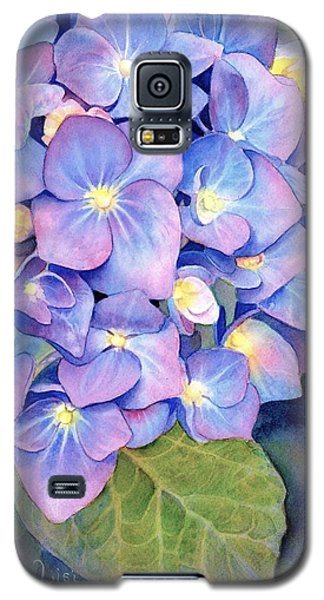 Pink And Blue Galaxy S5 Case