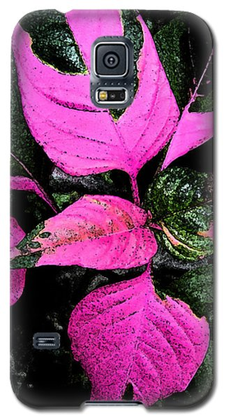 Galaxy S5 Case featuring the photograph Pink And Green by Aimee L Maher Photography and Art Visit ALMGallerydotcom