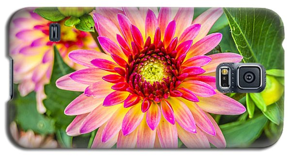 Pink And Purple Blooms Galaxy S5 Case