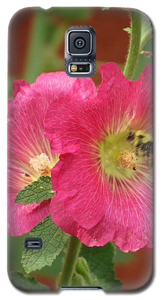 Galaxy S5 Case featuring the photograph Pink And Sweet by Jeanette Oberholtzer