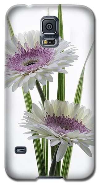 Pink And White Gerbera Galaxy S5 Case
