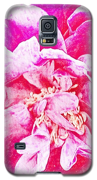 Pink And White Joy Galaxy S5 Case by Ann Tracy