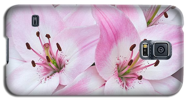 Pink And White Lilies Galaxy S5 Case by Jane McIlroy