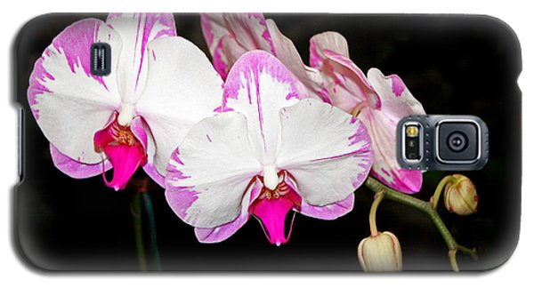 Pink And White Orchids Galaxy S5 Case by Mariarosa Rockefeller