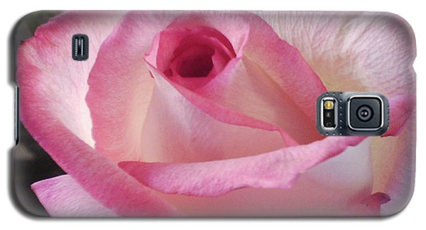 Galaxy S5 Case featuring the digital art Pink And White Rose by Angelia Hodges Clay