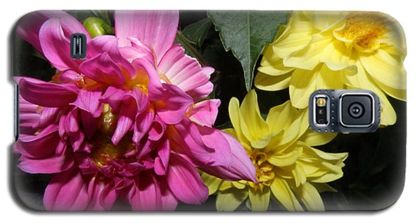Pink And Yellow Dahlia's Opening No. Cc62 Galaxy S5 Case