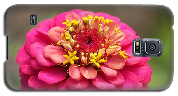 Galaxy S5 Case featuring the photograph Pink Floral  by Eunice Miller
