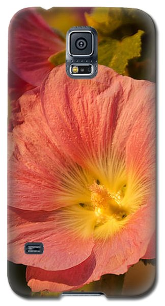 Galaxy S5 Case featuring the photograph Pink And Yellow Hollyhock by Sue Smith