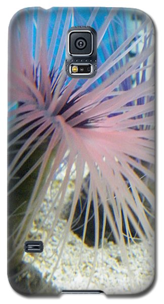 Pink Anemone Galaxy S5 Case