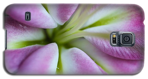 Galaxy S5 Case featuring the photograph Pink Asiatic Lily by Julie Andel