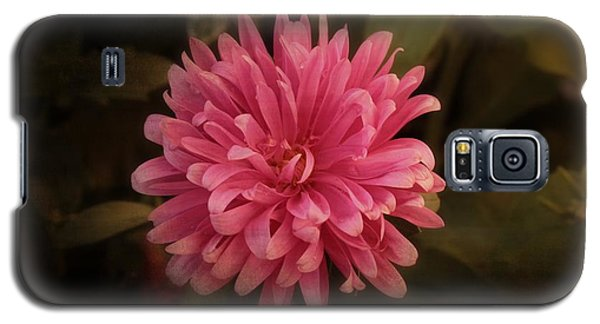 Galaxy S5 Case featuring the photograph Pink Aster by Marjorie Imbeau