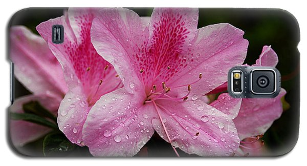 Galaxy S5 Case featuring the photograph Pink Azalea by Lorenzo Cassina
