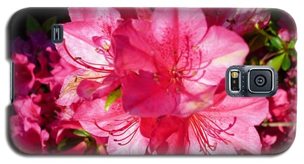 Galaxy S5 Case featuring the photograph Pink Azalea by Therese Alcorn