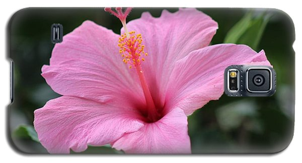 Pink Blossom Galaxy S5 Case by Nance Larson