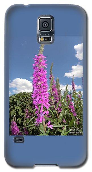 Pink Brilliance Galaxy S5 Case