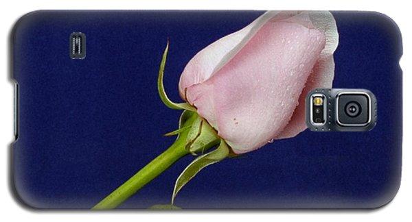 Pink Bud Galaxy S5 Case