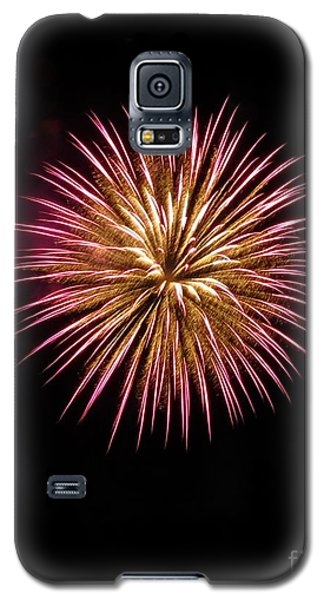 Pink Burst Galaxy S5 Case