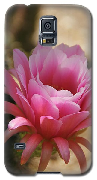 Galaxy S5 Case featuring the photograph Pink Cactus by Tammy Espino