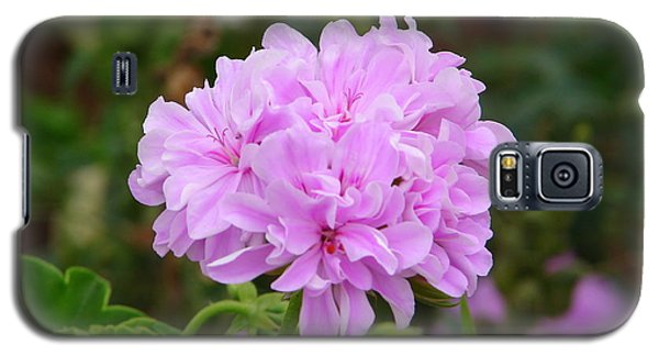 Galaxy S5 Case featuring the photograph Pink Cluster by Lew Davis
