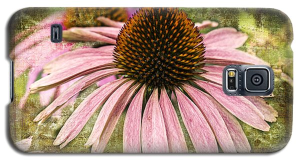 Pink Coneflower Galaxy S5 Case by Vicki DeVico