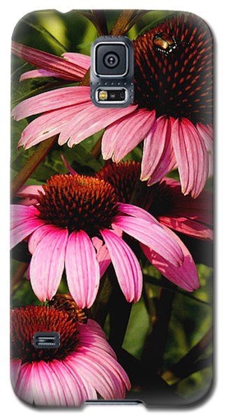 Pink Coneflowers Galaxy S5 Case